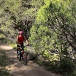 Mountain Biking Red River New Mexico