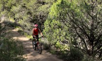 Red River New Mexico Mountain Biking